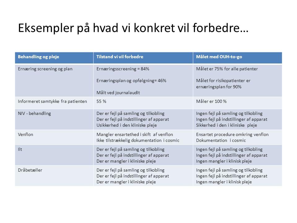 Eksempler på hvad vi konkret vil forbedre…