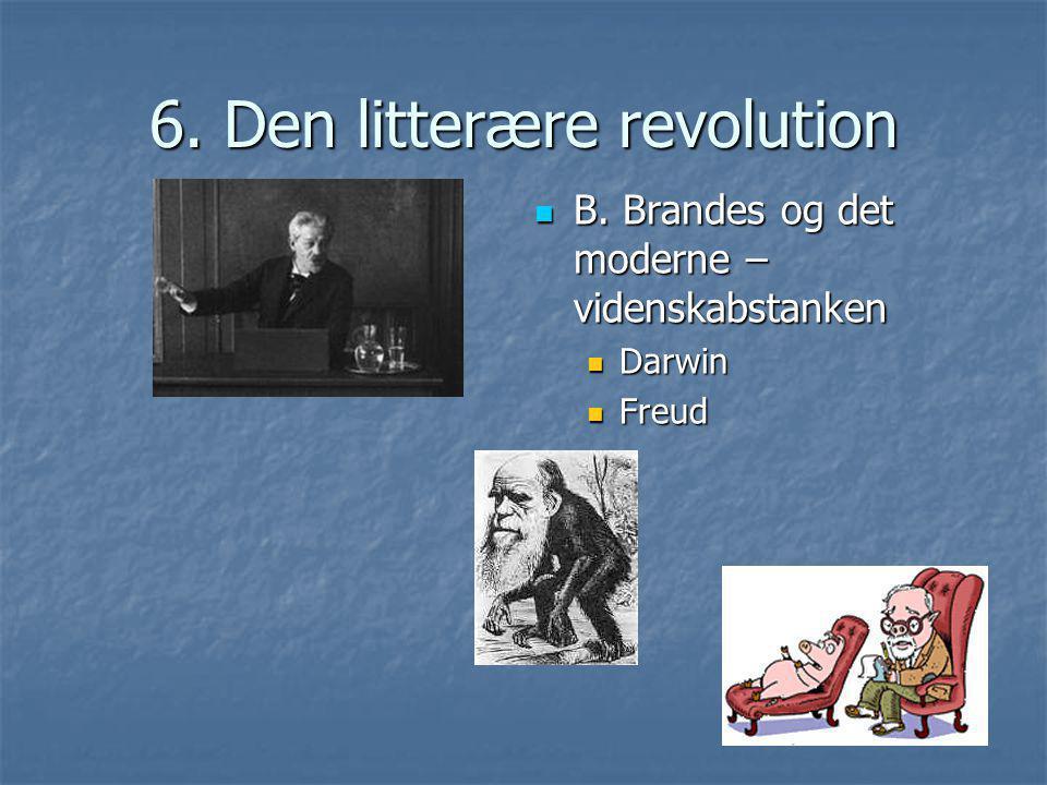 6. Den litterære revolution