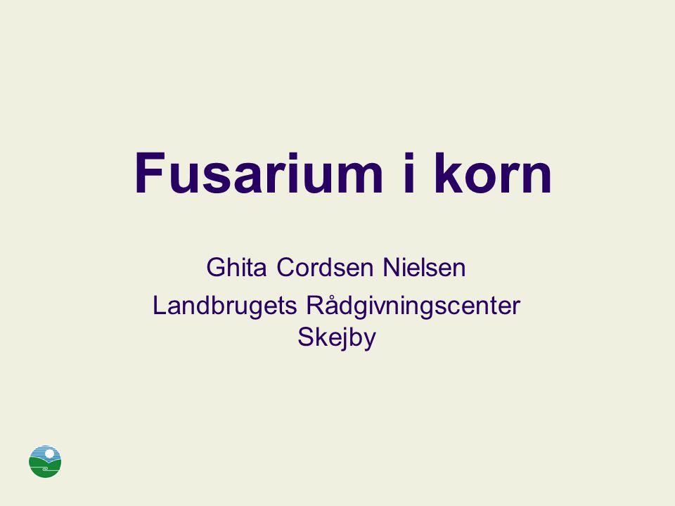 Ghita Cordsen Nielsen Landbrugets Rådgivningscenter Skejby