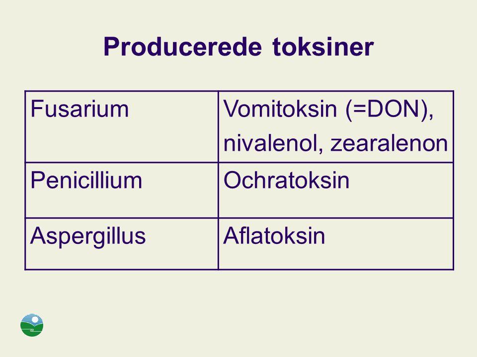 Producerede toksiner Fusarium Vomitoksin (=DON), nivalenol, zearalenon