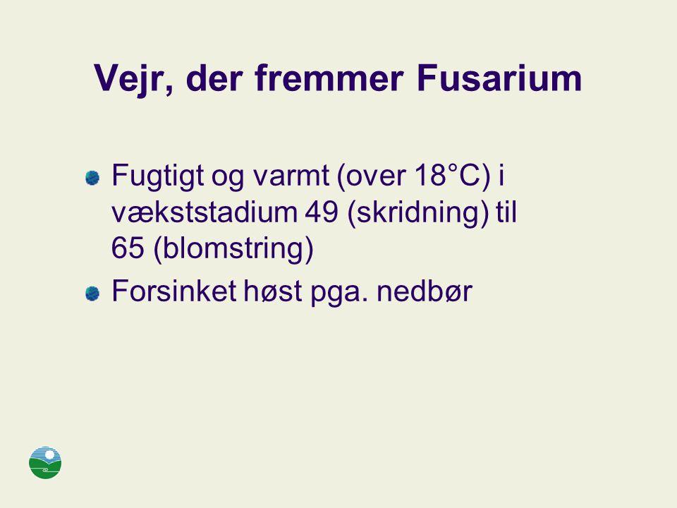 Vejr, der fremmer Fusarium
