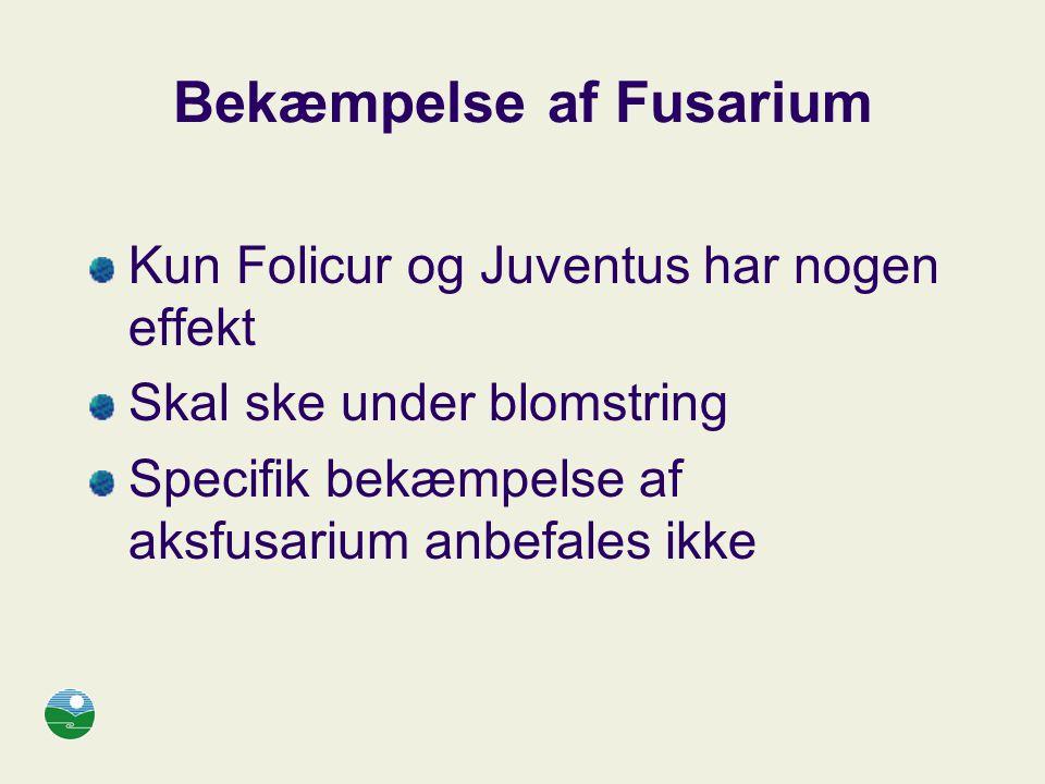 Bekæmpelse af Fusarium