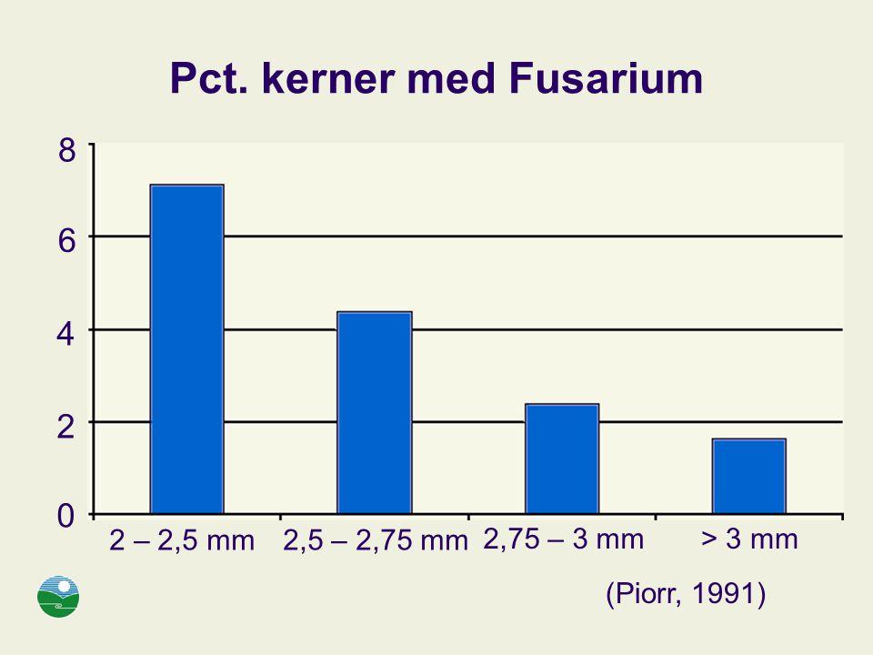 Pct. kerner med Fusarium