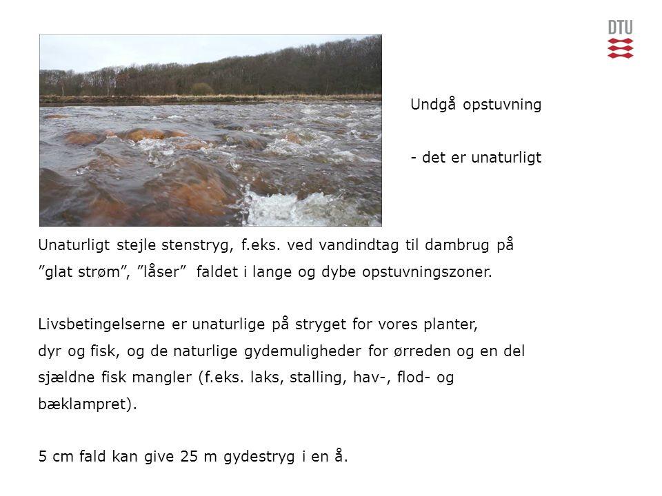 Undgå opstuvning - det er unaturligt. Unaturligt stejle stenstryg, f.eks. ved vandindtag til dambrug på.