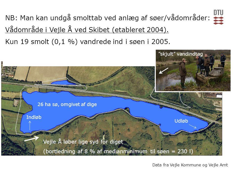 NB: Man kan undgå smolttab ved anlæg af søer/vådområder: