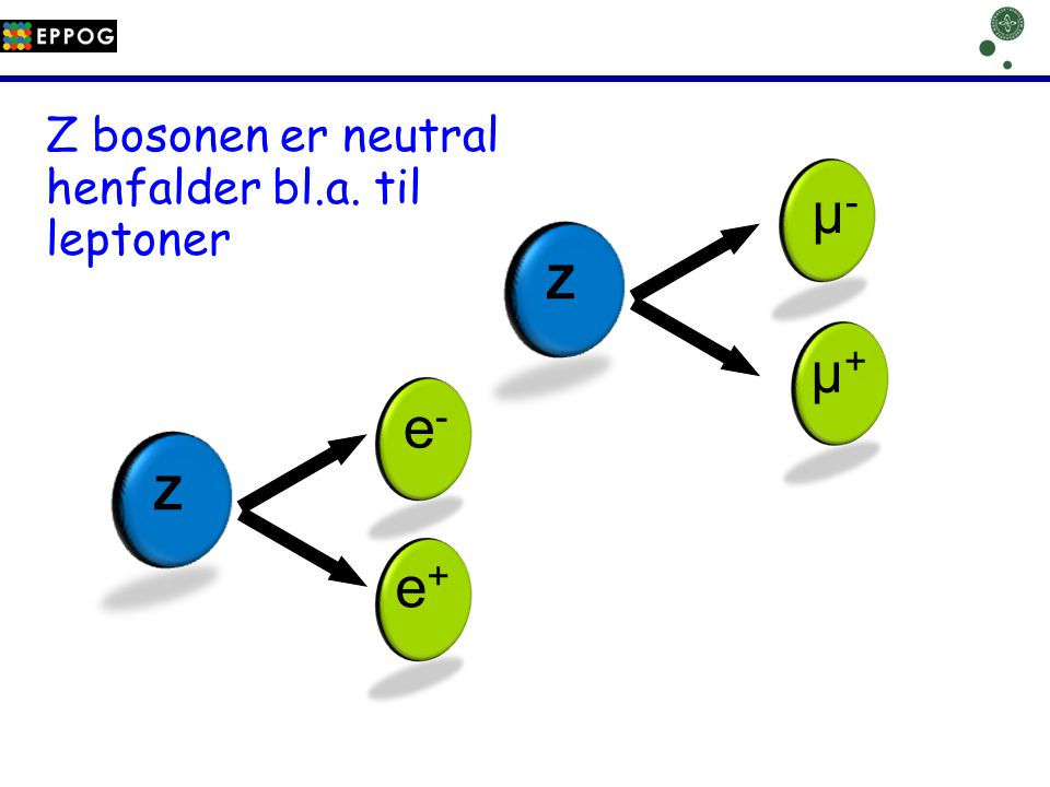 µ- µ+ e- e+ Z bosonen er neutral henfalder bl.a. til leptoner Z Z