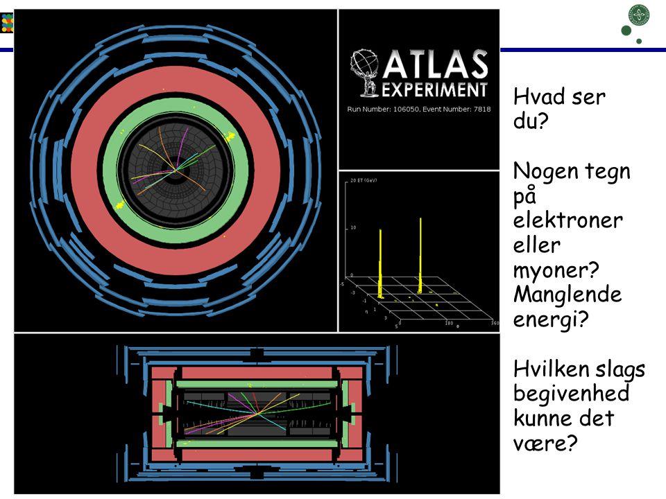 Hvad ser du. Nogen tegn på elektroner eller myoner.