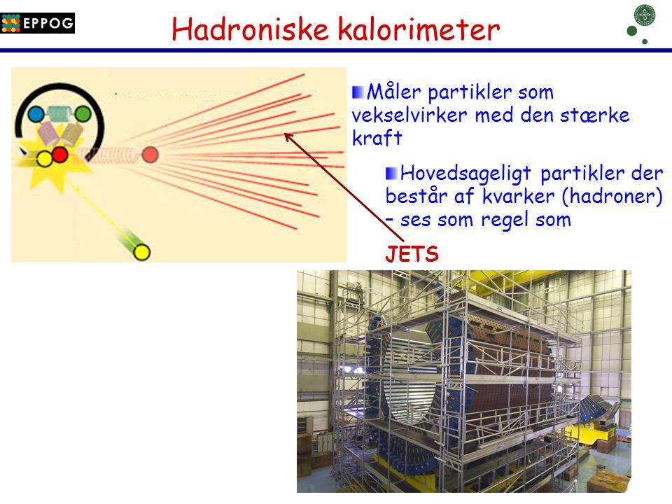 Hadroniske kalorimeter