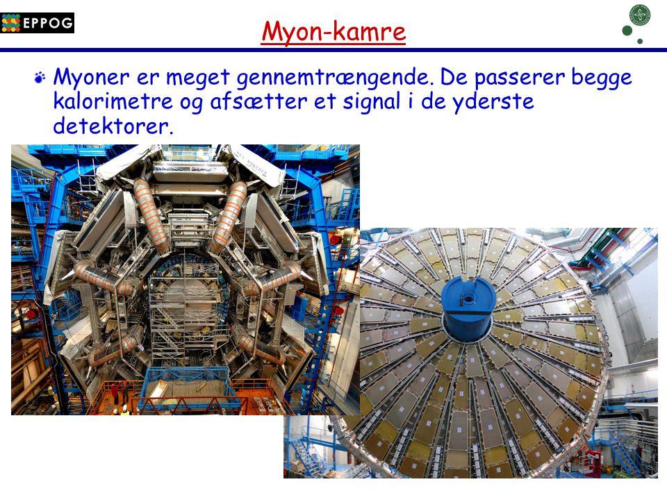 Myon-kamre Myoner er meget gennemtrængende.