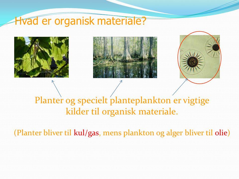Hvad er organisk materiale