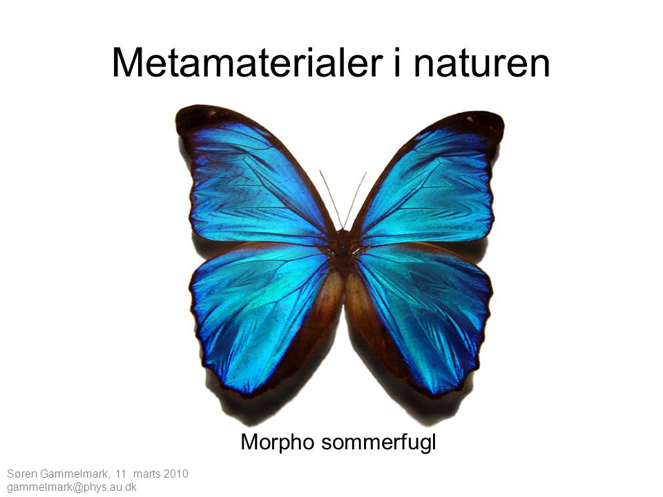 Metamaterialer i naturen