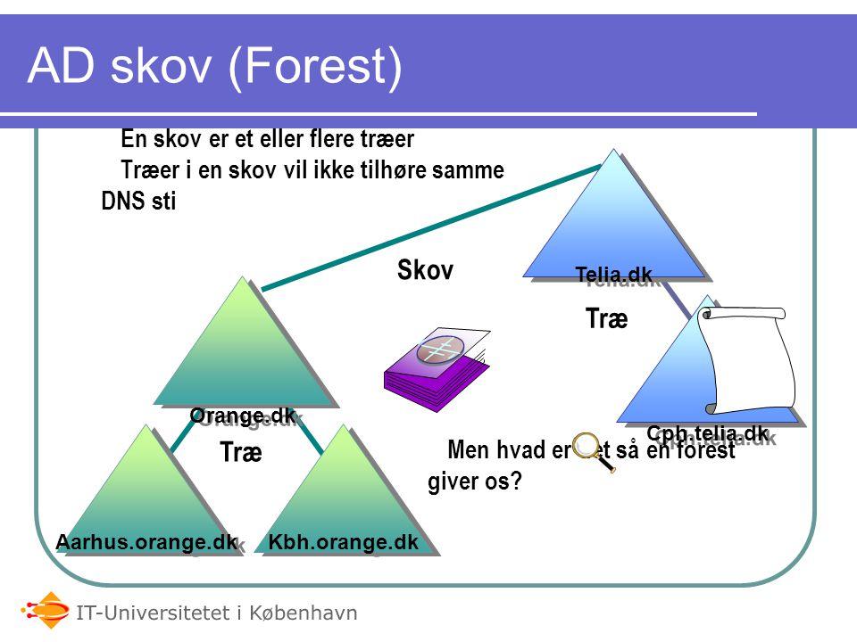 AD skov (Forest) Skov Træ Træ En skov er et eller flere træer