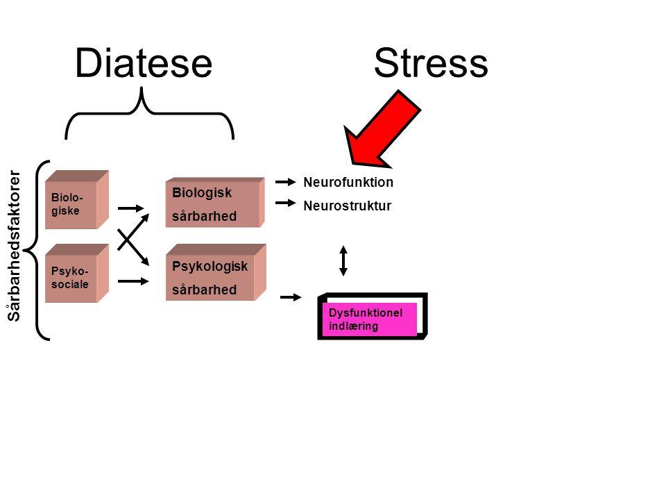 Diatese Stress Sårbarhedsfaktorer Neurofunktion Neurostruktur
