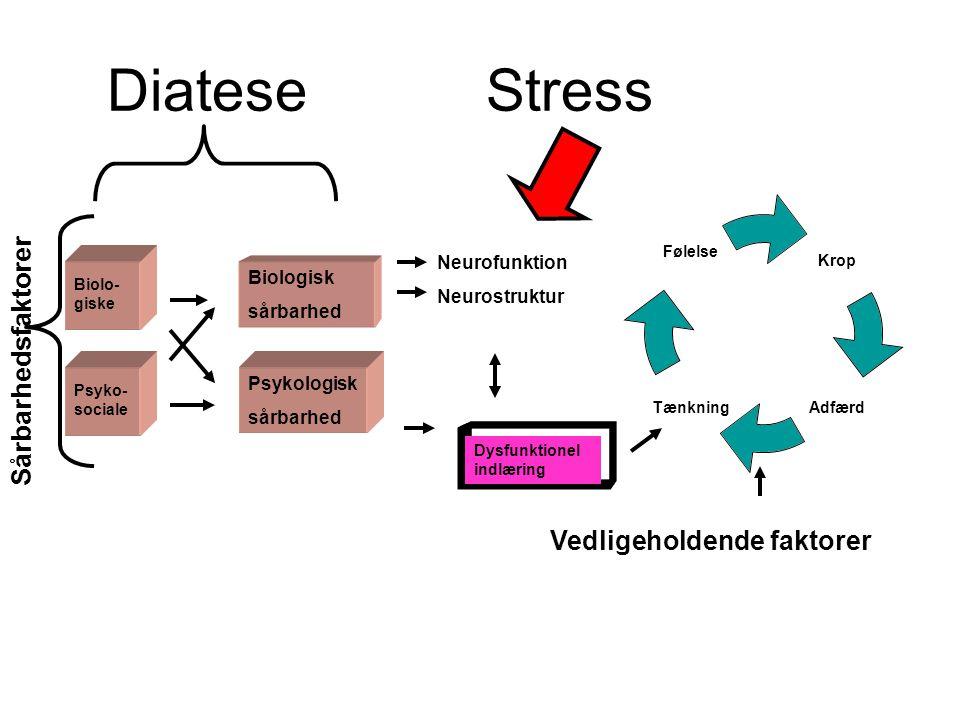 Diatese Stress Sårbarhedsfaktorer Vedligeholdende faktorer