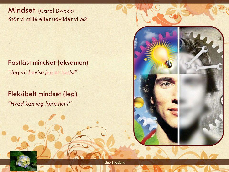 Mindset (Carol Dweck) Står vi stille eller udvikler vi os