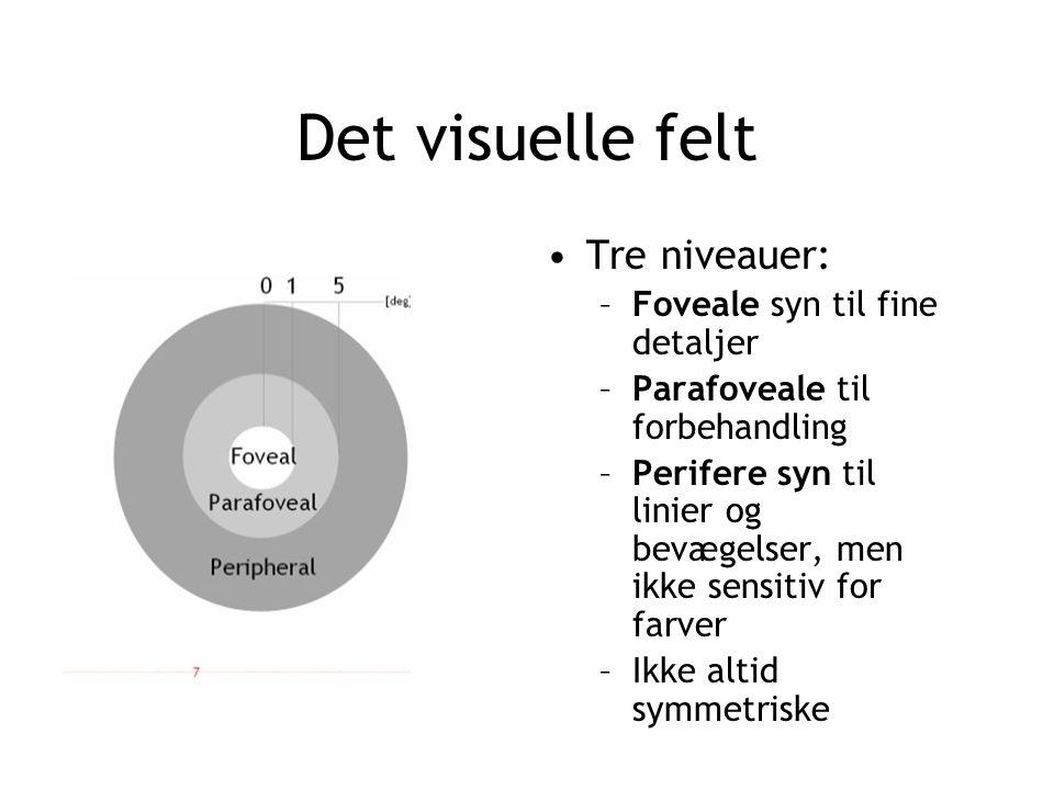 Det visuelle felt Tre niveauer: Foveale syn til fine detaljer