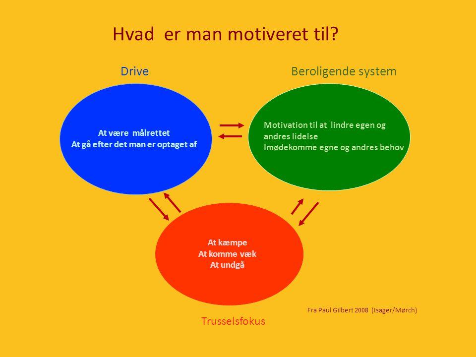 Hvad er man motiveret til