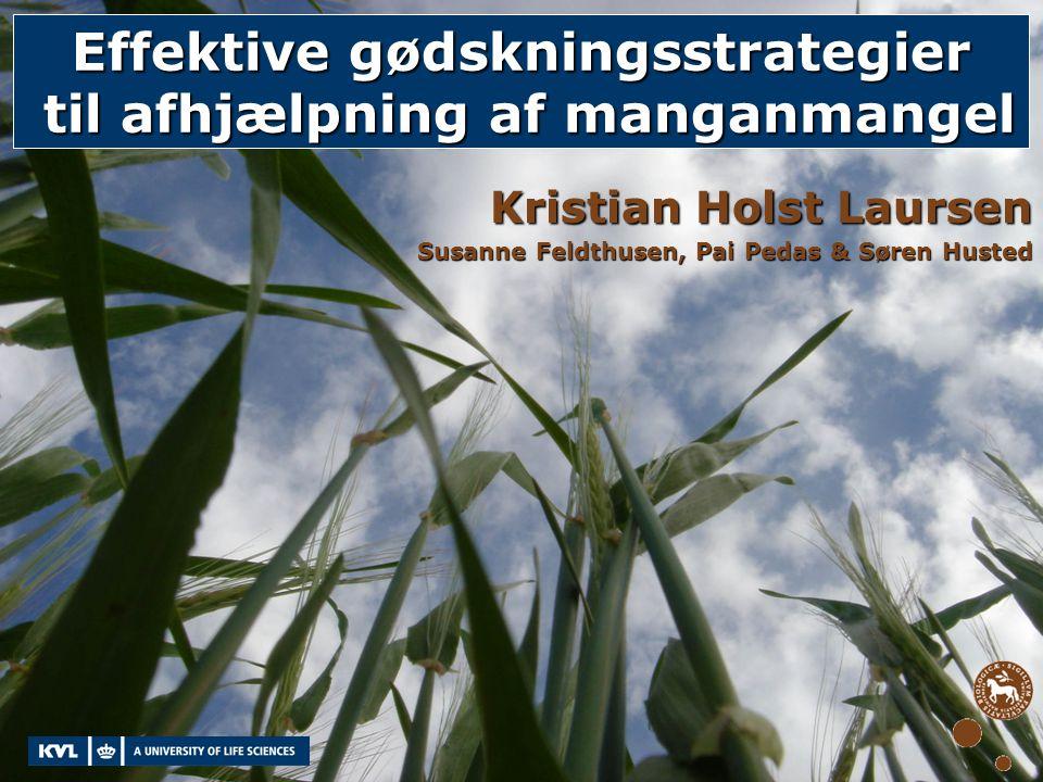 Effektive gødskningsstrategier til afhjælpning af manganmangel