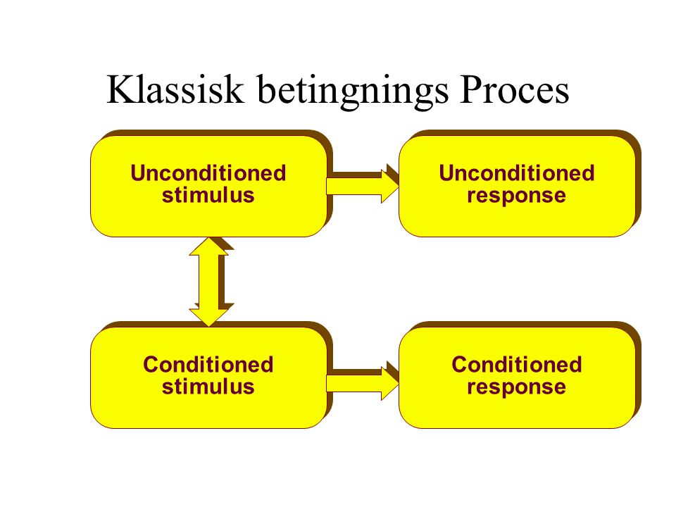 Klassisk betingnings Proces