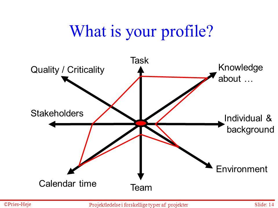 Projektledelse i forskellige typer af projekter