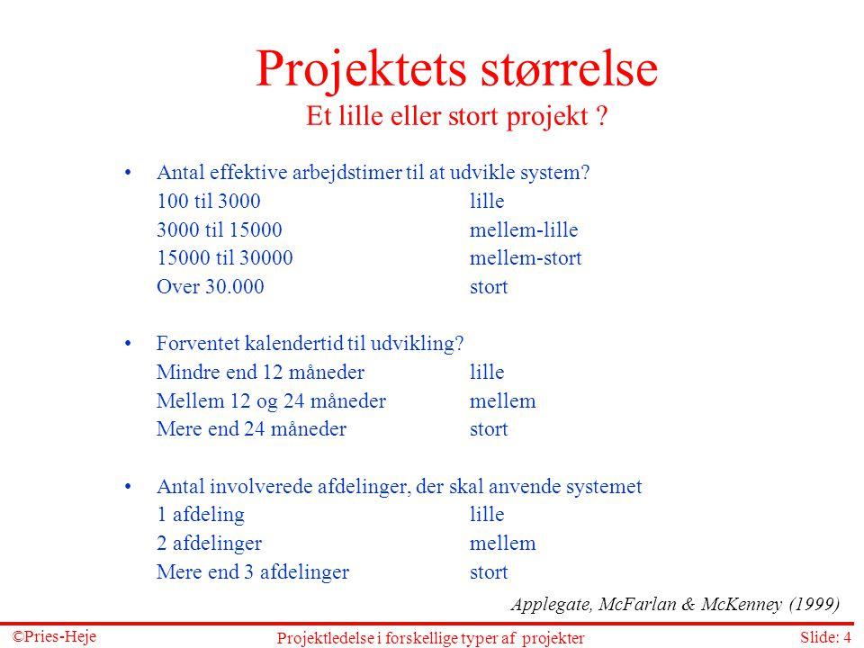 Projektets størrelse Et lille eller stort projekt