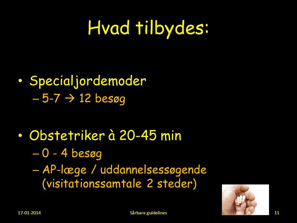 Hvad tilbydes: Specialjordemoder Obstetriker à 20-45 min