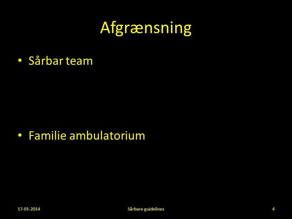 Afgrænsning Sårbar team Familie ambulatorium 17-01-2014