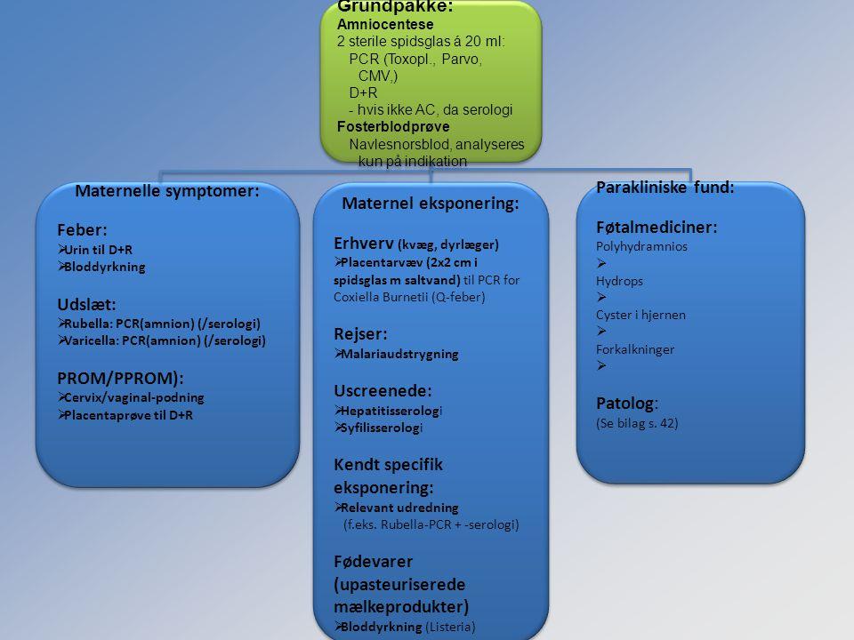 Maternelle symptomer: Maternel eksponering:
