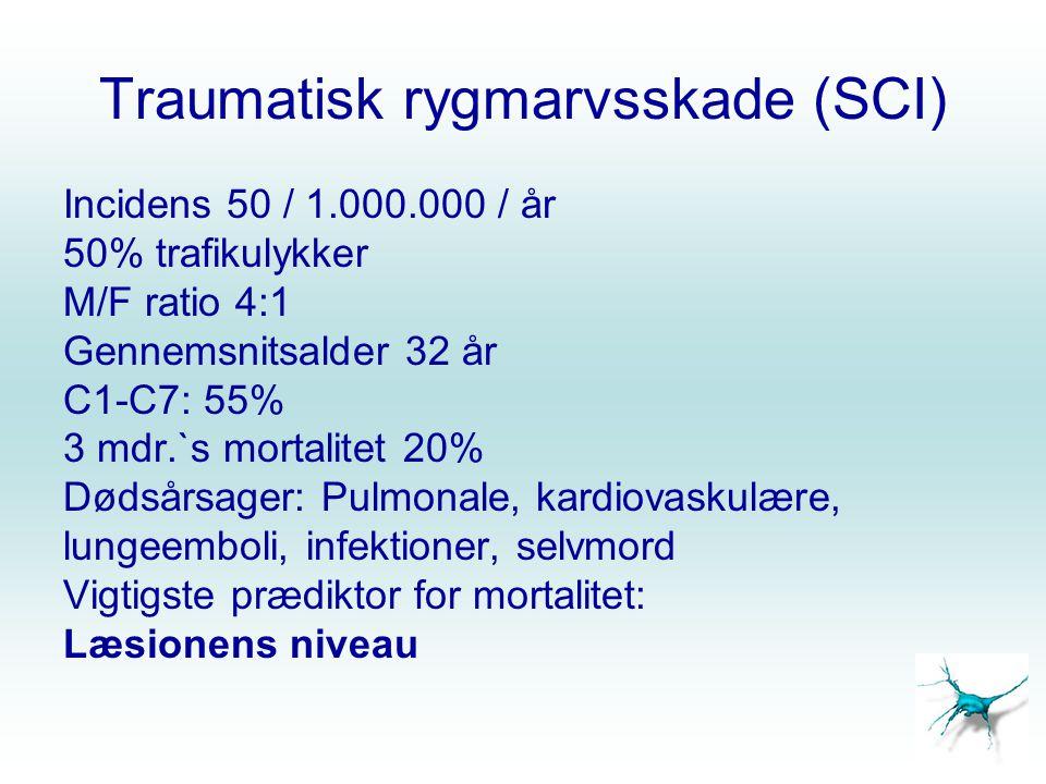 Traumatisk rygmarvsskade (SCI)