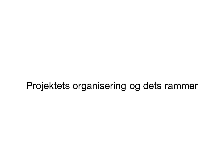 Projektets organisering og dets rammer
