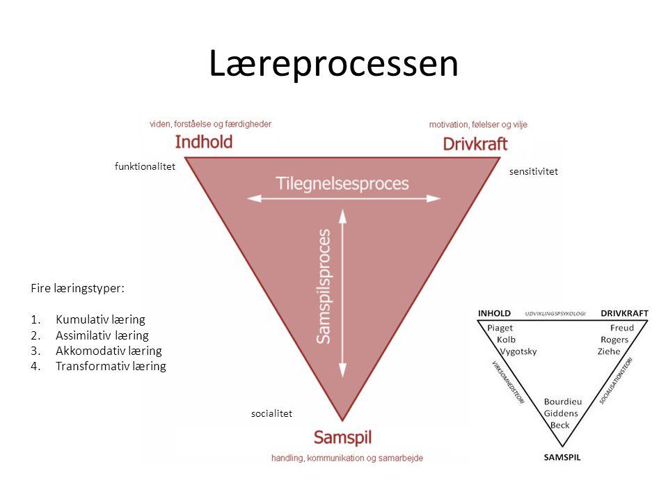 Læreprocessen Fire læringstyper: Kumulativ læring Assimilativ læring