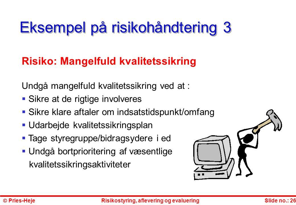 Eksempel på risikohåndtering 3