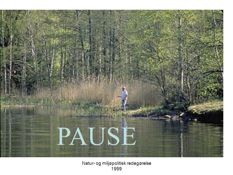 Natur- og miljøpolitisk redegørelse 1999