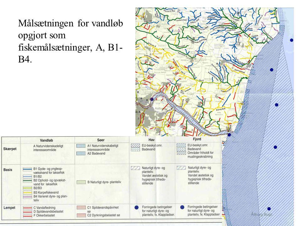 Målsætningen for vandløb opgjort som fiskemålsætninger, A, B1-B4.