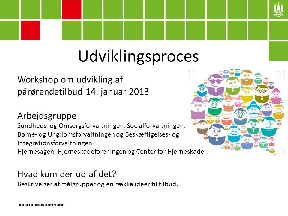 Udviklingsproces Workshop om udvikling af