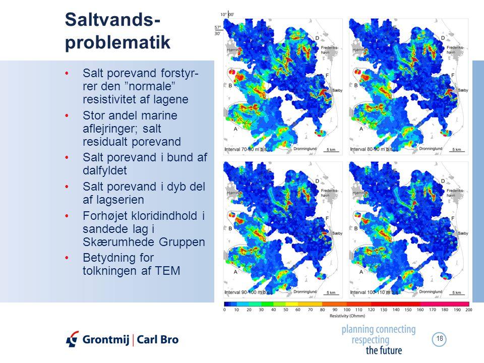Saltvands- problematik