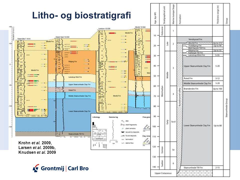 Litho- og biostratigrafi