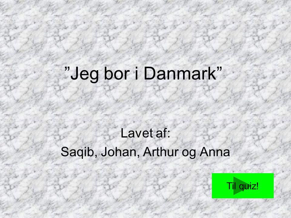 Lavet af: Saqib, Johan, Arthur og Anna