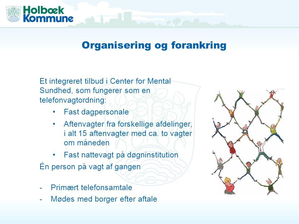 Organisering og forankring
