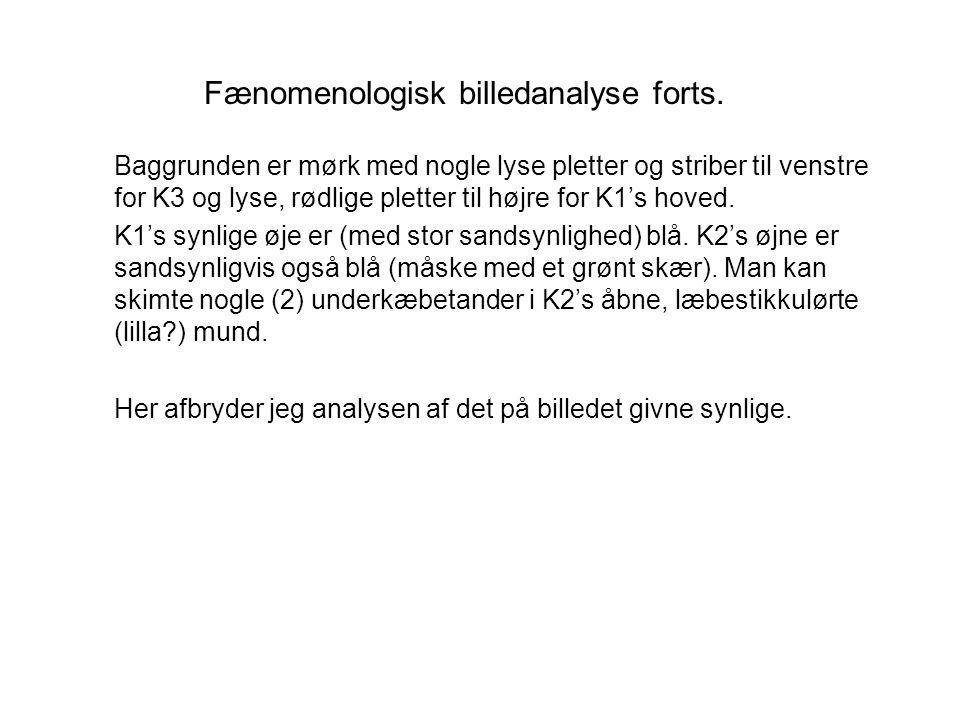 Fænomenologisk billedanalyse forts.
