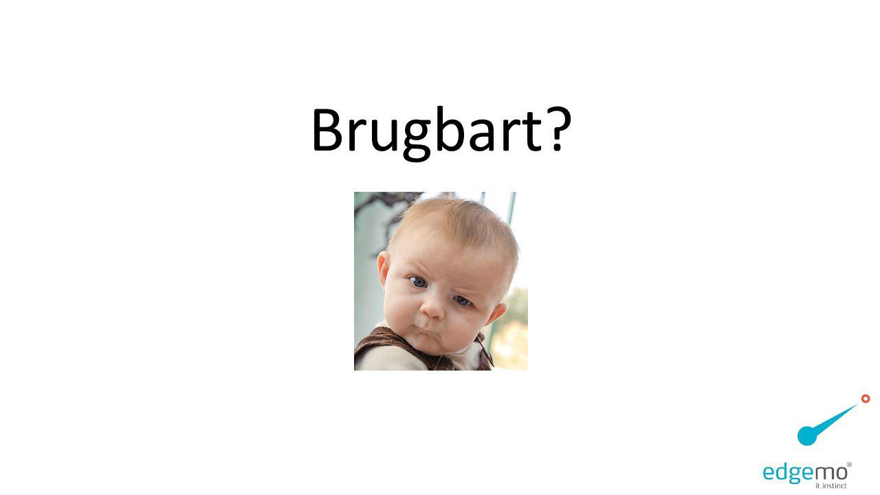Brugbart