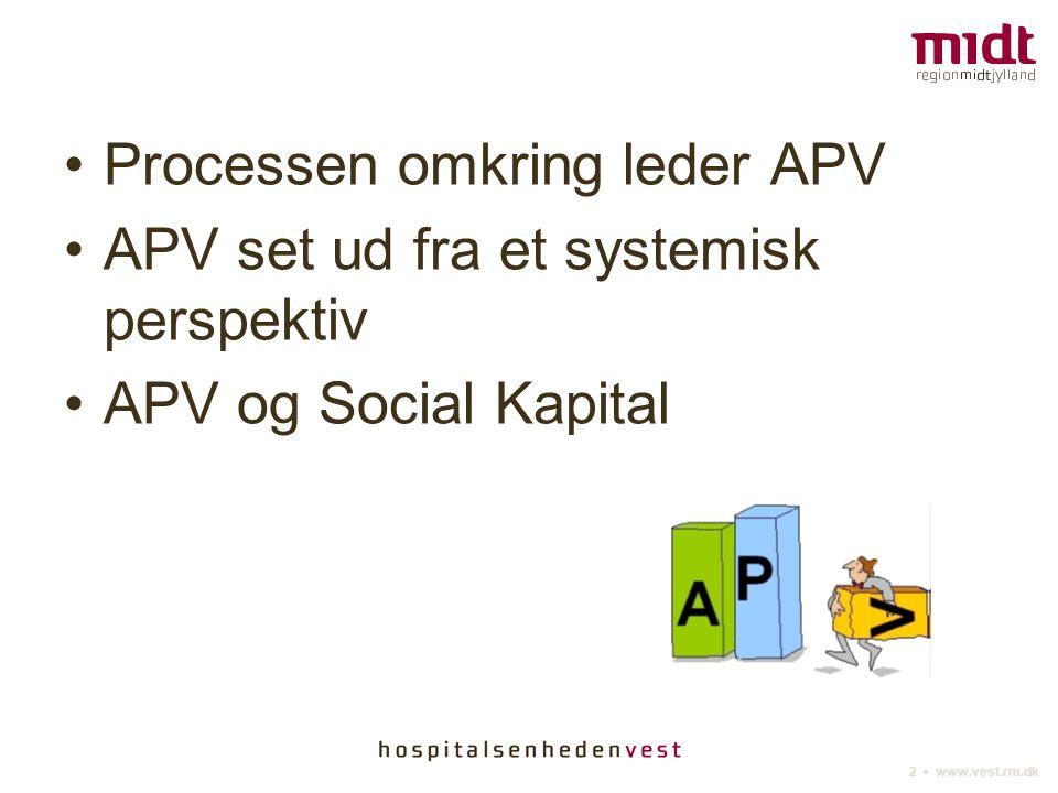 Processen omkring leder APV