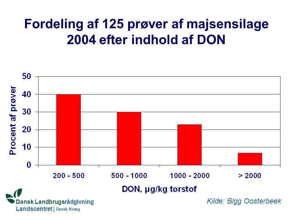 Fordeling af 125 prøver af majsensilage 2004 efter indhold af DON