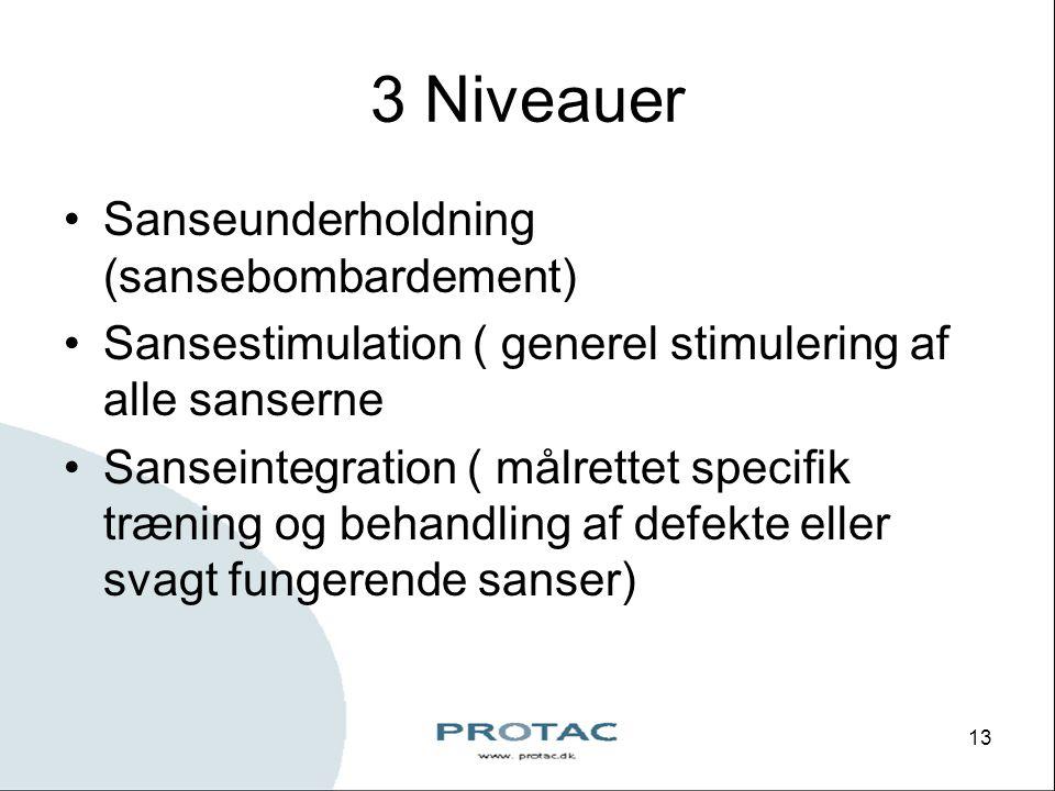 3 Niveauer Sanseunderholdning (sansebombardement)
