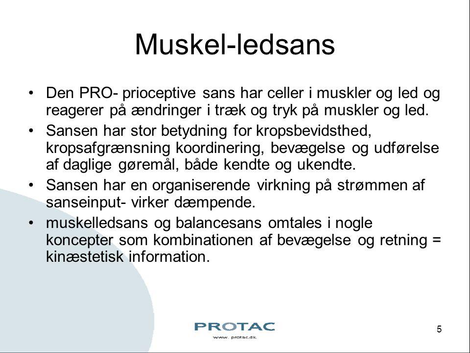 Muskel-ledsans Den PRO- prioceptive sans har celler i muskler og led og reagerer på ændringer i træk og tryk på muskler og led.