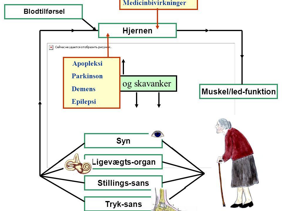 Sygdomme og skavanker Hjernen Muskel/led-funktion Syn Ligevægts-organ