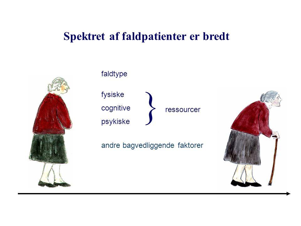  Spektret af faldpatienter er bredt faldtype fysiske cognitive