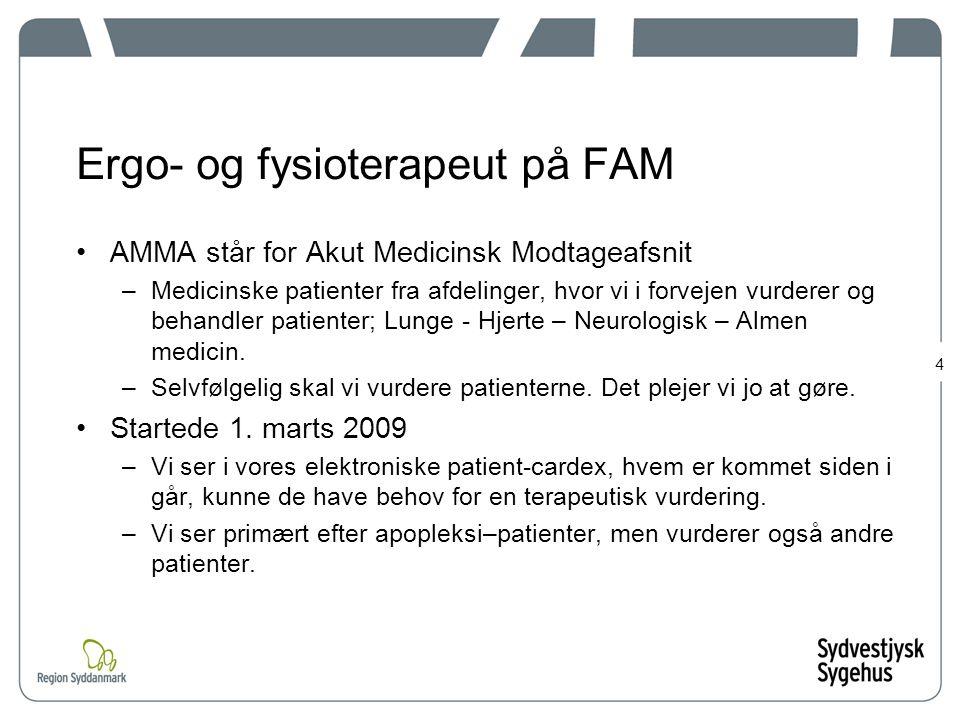 Ergo- og fysioterapeut på FAM