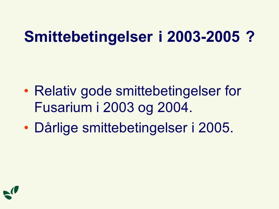 Smittebetingelser i 2003-2005 . Relativ gode smittebetingelser for Fusarium i 2003 og 2004.
