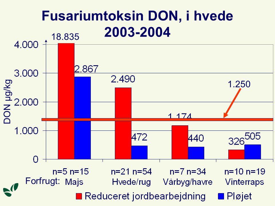 Fusariumtoksin DON, i hvede 2003-2004